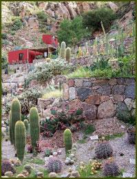 Jardín Botánico Chirau Mita