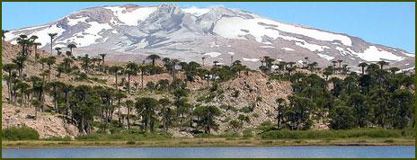 Laguna Escondida - Neuquén