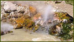 Aguas Calientes - Neuquén