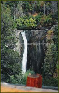 Cascada Los Alerces - Bariloche
