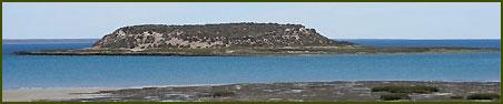 Isla de los Pájaros - Sierra Grande