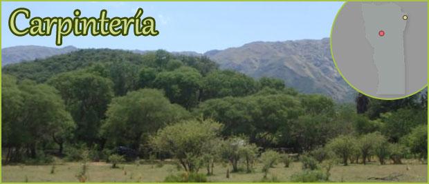 Carpintería - San Luis