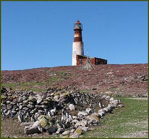 Isla Pingüino - Puerto Deseado