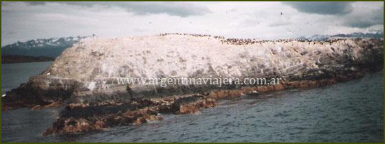 Isla de los Pájaros -  Ushuaia